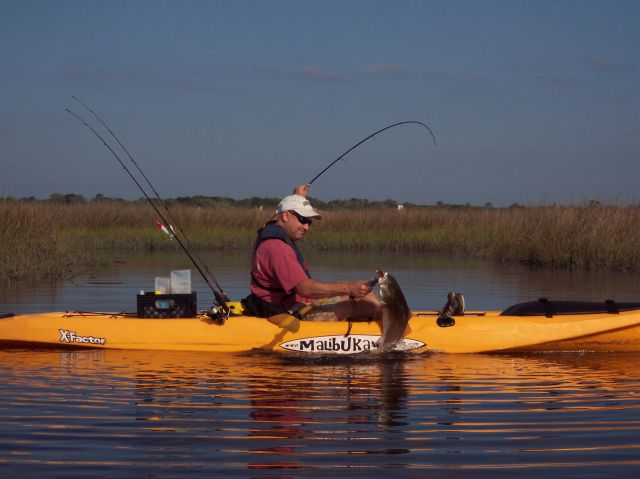 jacksonville kayak fishing gallery fishing pictures the